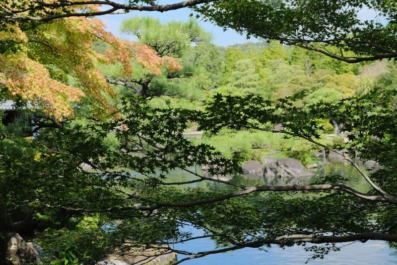 姫路旅行で姫路城に行かずに好古園と姫路市立動物園を楽しんだ